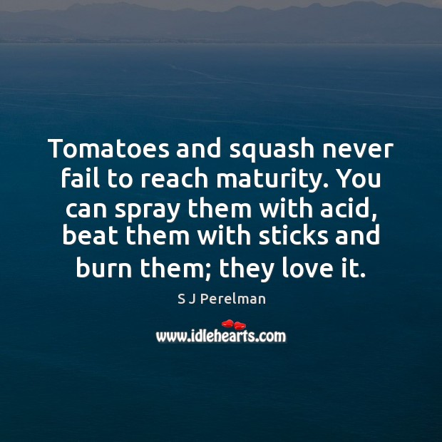 Image, Tomatoes and squash never fail to reach maturity. You can spray them