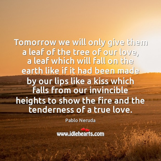 Tomorrow we will only give them a leaf of the tree of Image