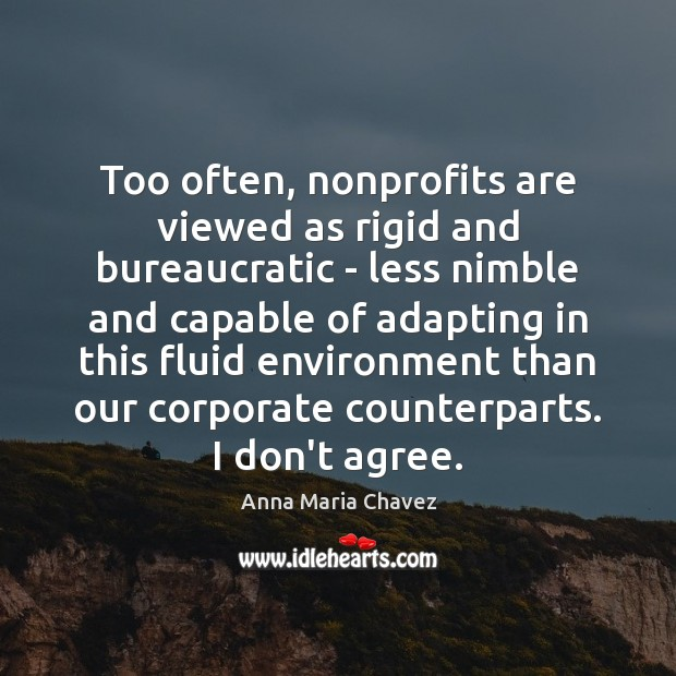 Image, Too often, nonprofits are viewed as rigid and bureaucratic – less nimble