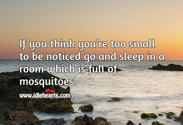 If you think you're too small to be noticed go and sleep in a room which is full of mosquitoes. African Proverbs Image