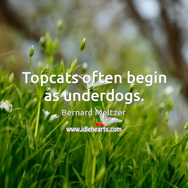 Bernard Meltzer Picture Quote image saying: Topcats often begin as underdogs.
