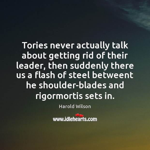 Image, Tories never actually talk about getting rid of their leader, then suddenly