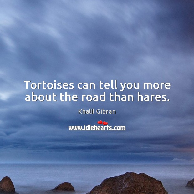 Tortoises can tell you more about the road than hares. Khalil Gibran Picture Quote