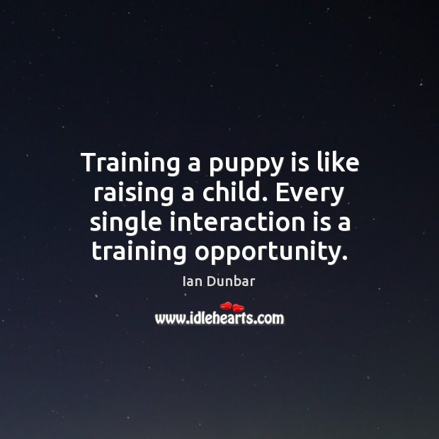 Training a puppy is like raising a child. Every single interaction is Image