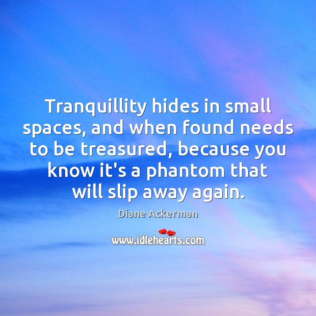 Tranquillity hides in small spaces, and when found needs to be treasured, Image