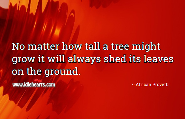 No matter how tall a tree might grow it will always shed its leaves on the ground. African Proverbs Image