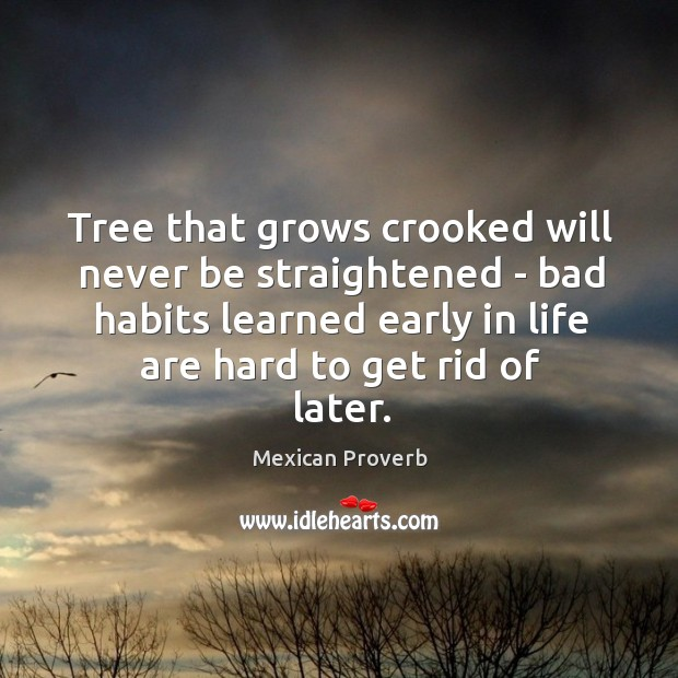 Tree that grows crooked will never be straightened Mexican Proverbs Image