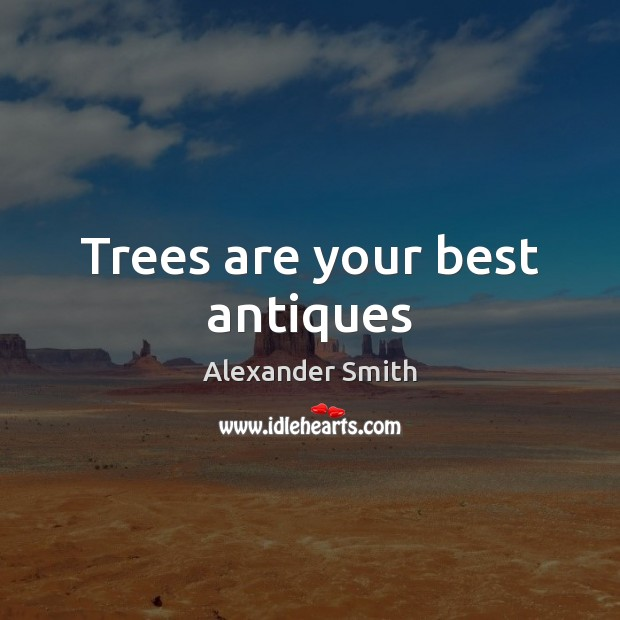 Trees are your best antiques Alexander Smith Picture Quote