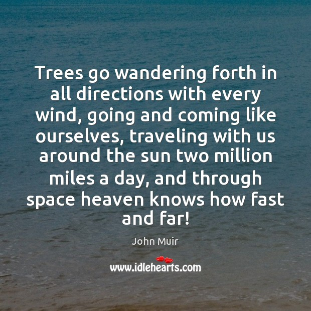 Trees go wandering forth in all directions with every wind, going and John Muir Picture Quote