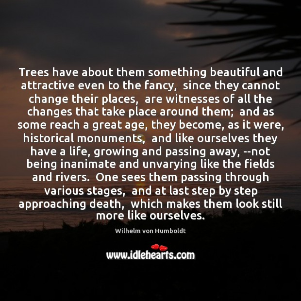 Image, Trees have about them something beautiful and attractive even to the fancy,