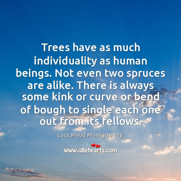 Trees have as much individuality as human beings. Not even two spruces Image