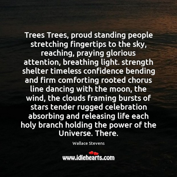 Trees Trees, proud standing people stretching fingertips to the sky, reaching, praying Image