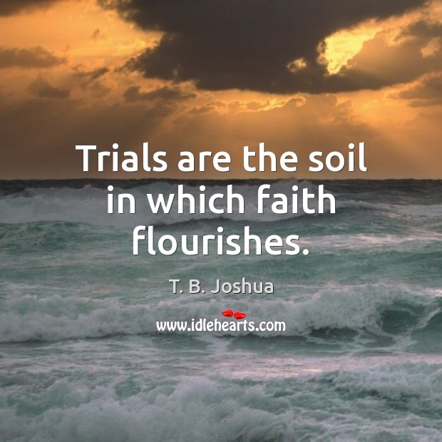 Trials are the soil in which faith flourishes. Image
