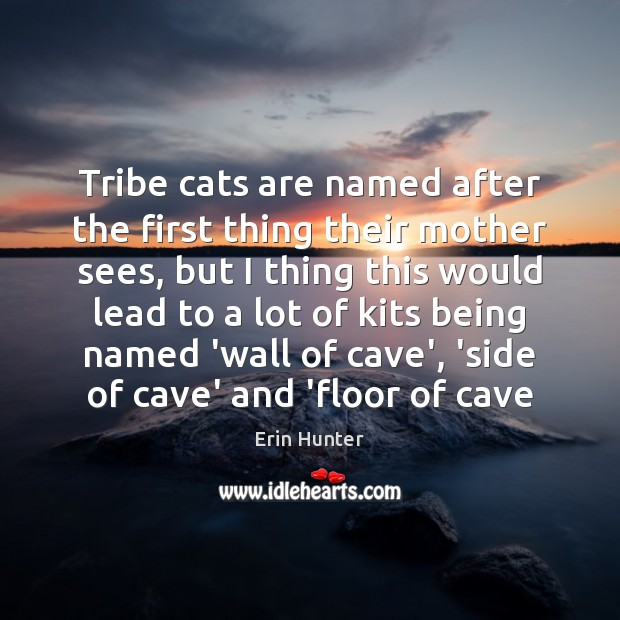 Tribe cats are named after the first thing their mother sees, but Erin Hunter Picture Quote