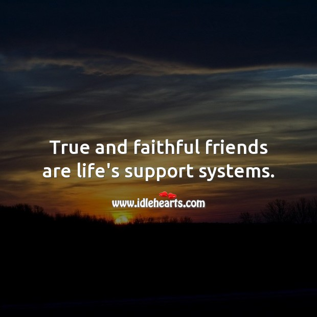 True and faithful friends are life's support systems. Faithful Quotes Image