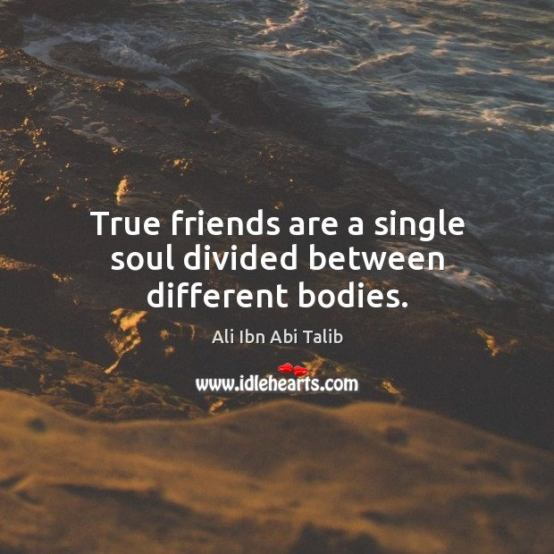 Image, True friends are a single soul divided between different bodies.