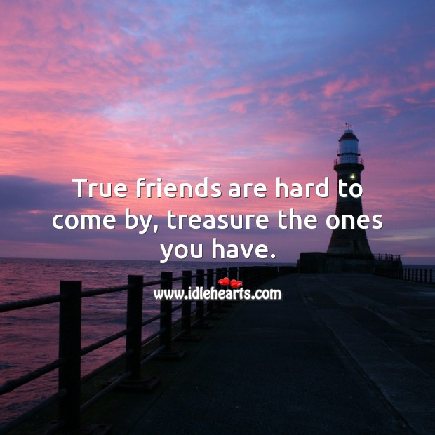 Image, True friends are hard to come by, treasure the ones you have.