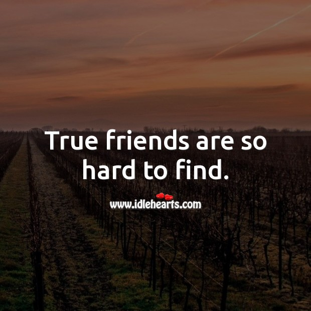 True friends are so hard to find. Image