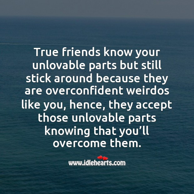 True friends know your unlovable parts but still stick around. True Friends Quotes Image