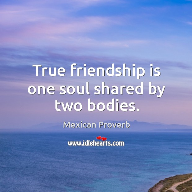 Image, True friendship is one soul shared by two bodies.