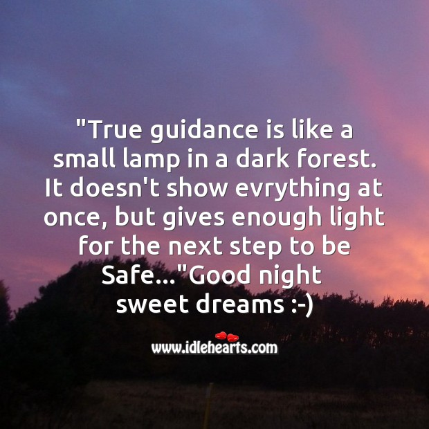 Image, True guidance is like a small lamp in a dark forest.