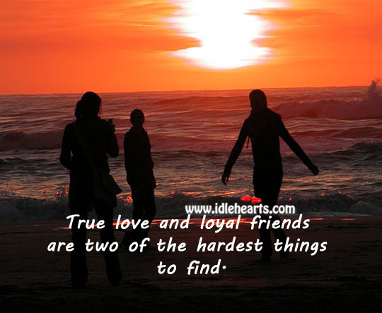 True love and loyal friends are two of the hardest things to find. Image