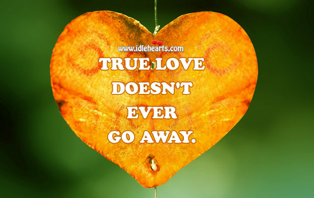True Love Doesn't Ever Go Away., True Love