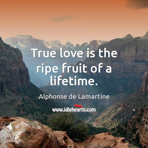 True love is the ripe fruit of a lifetime. Alphonse de Lamartine Picture Quote