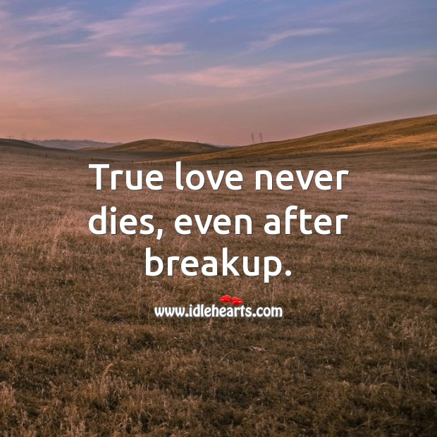 True love never dies, even after breakup. True Love Quotes Image