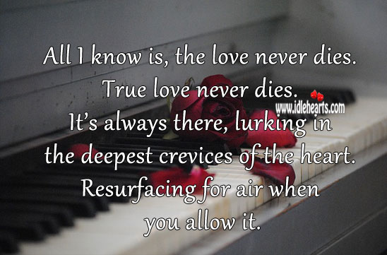 Image, All I know is, the love never dies. True love never dies.