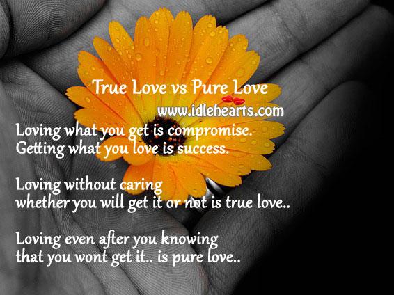 True love vs pure love Care Quotes Image