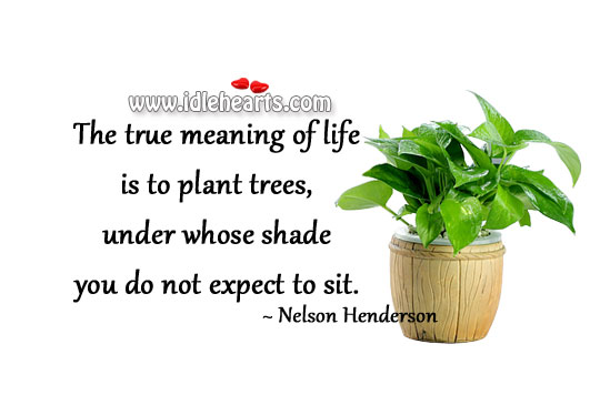 True meaning of life Expect Quotes Image