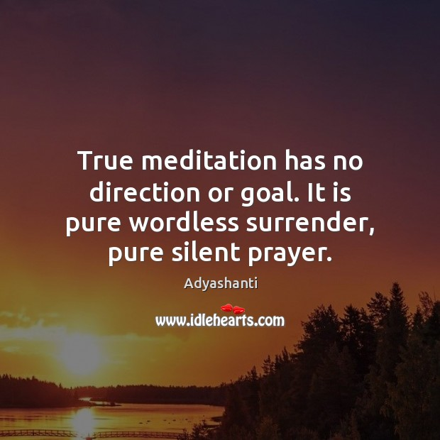 Image, True meditation has no direction or goal. It is pure wordless surrender,