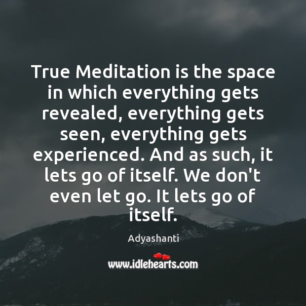 True Meditation is the space in which everything gets revealed, everything gets Image