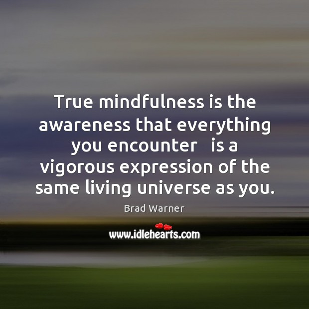 True mindfulness is the awareness that everything you encounter   is a vigorous Brad Warner Picture Quote