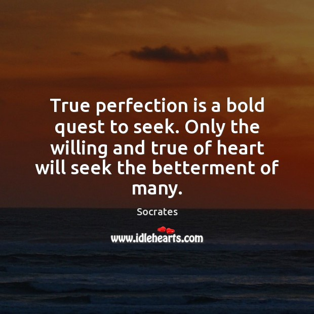 True perfection is a bold quest to seek. Only the willing and Perfection Quotes Image