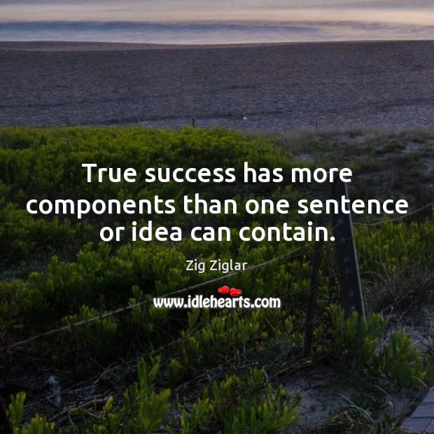 True success has more components than one sentence or idea can contain. Zig Ziglar Picture Quote