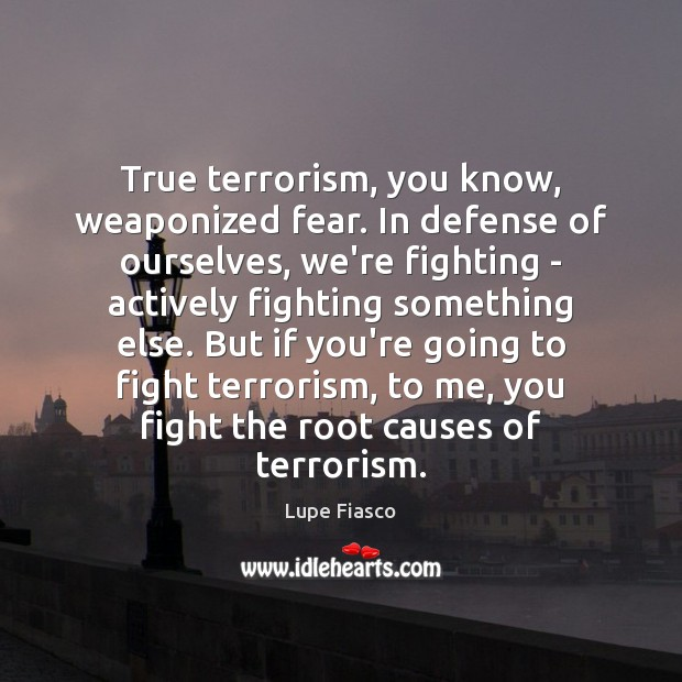 True terrorism, you know, weaponized fear. In defense of ourselves, we're fighting Image