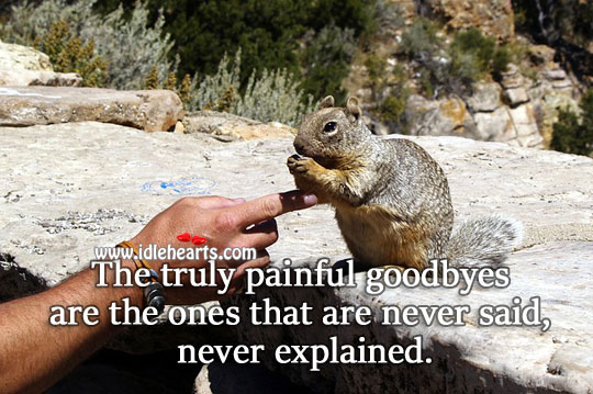 Truly painful goodbyes Sad Quotes Image