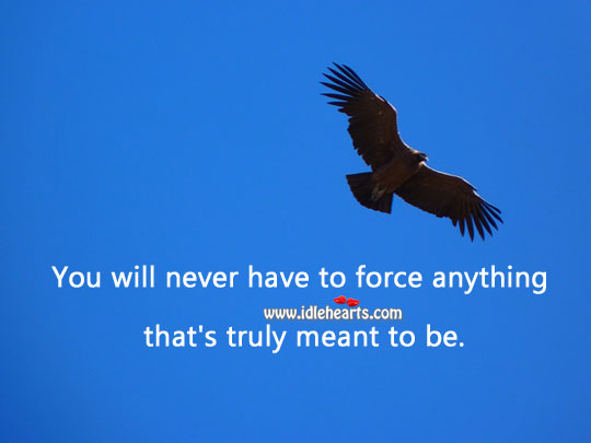 Image, You will never have to force anything that's truly meant to be.