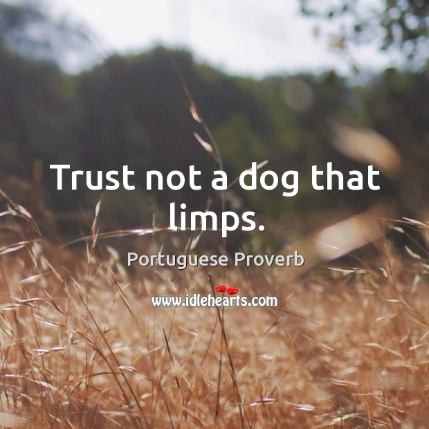Image, Trust not a dog that limps.