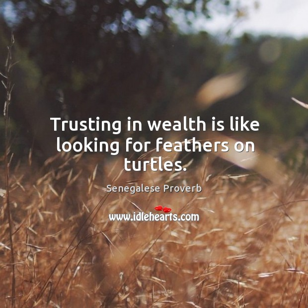 Trusting in wealth is like looking for feathers on turtles. Senegalese Proverbs Image