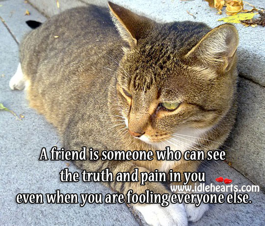 A Friend Can See The Truth And Pain In You