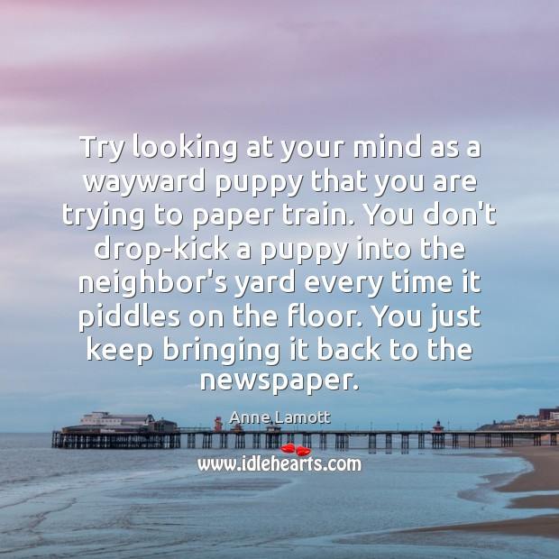 Try looking at your mind as a wayward puppy that you are Anne Lamott Picture Quote