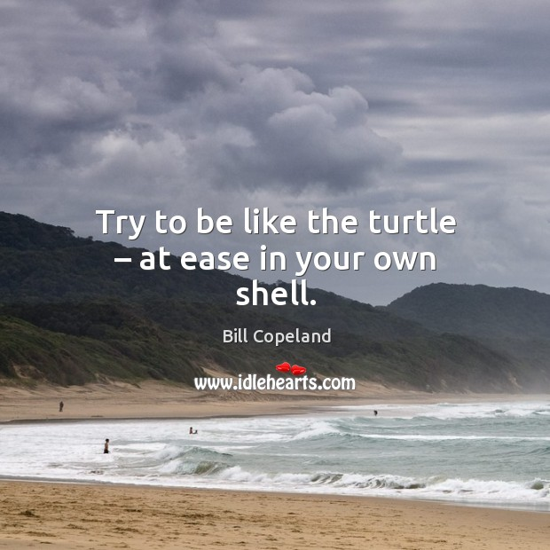 Image, Try to be like the turtle – at ease in your own shell.