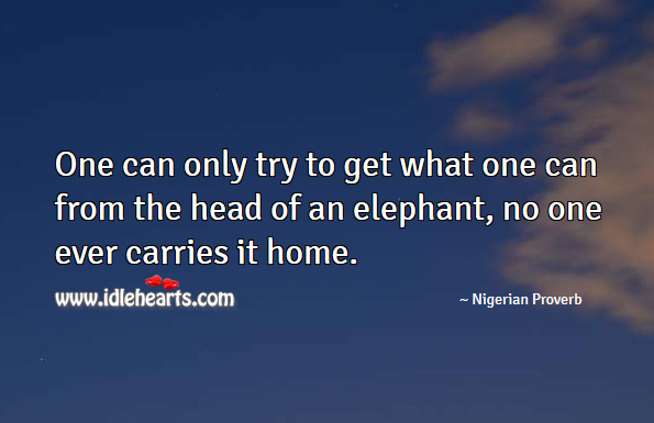 One can only try to get what one can from the head of an elephant, no one ever carries it home. Nigerian Proverbs Image