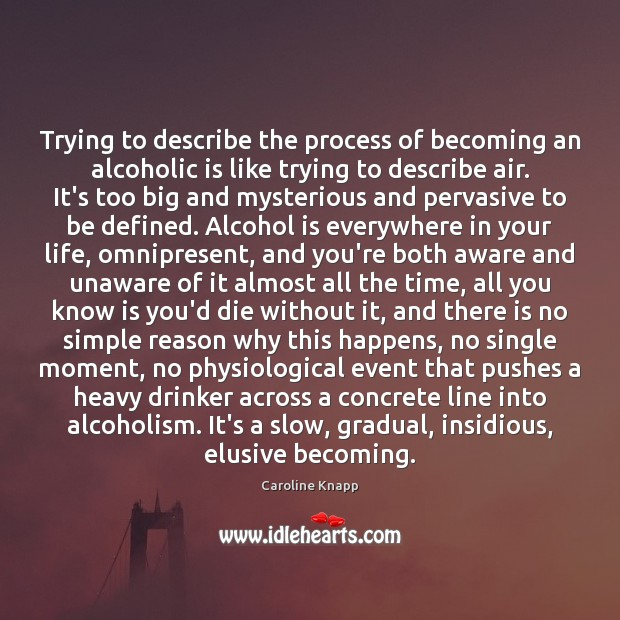 Trying to describe the process of becoming an alcoholic is like trying Alcohol Quotes Image