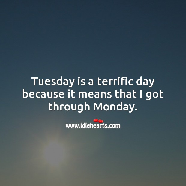 Tuesday is a terrific day because it means that I got through Monday. Tuesday Quotes Image