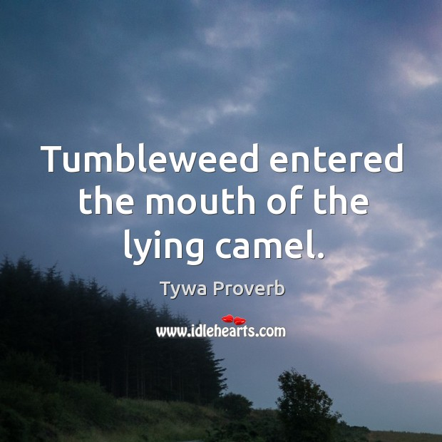 Image, Tumbleweed entered the mouth of the lying camel.