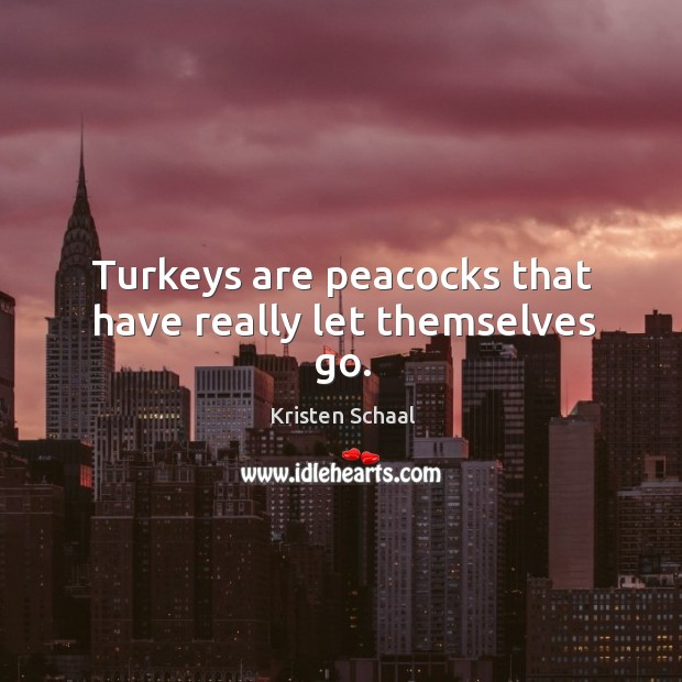 Turkeys are peacocks that have really let themselves go. Image